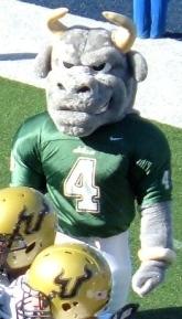 Rocky Bull (USF)