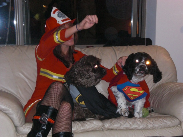 Did you know Super Dogs have laser eyes? ;)